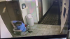 Dog's Leash Gets Stuck In Hotel Elevator As It Goes Up; Manager Saves Him With Seconds To Spare