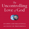 Six (or Seven) Models of God's Providence
